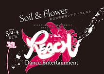 Dance Entertainment REACH
