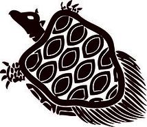 海ガメのゴサン