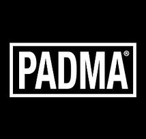 Performance team PADMA