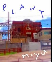 PLANT M