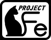 PROJECT Fe