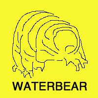 WATERBEAR LLC