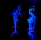 寂しがり屋のサメ