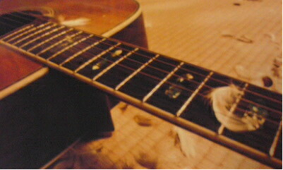 羽とギター
